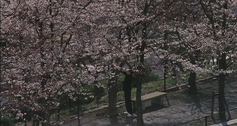 Blue Spring screenshot